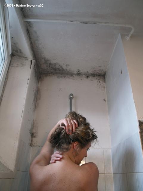 Moisissures dans une salle d'eau