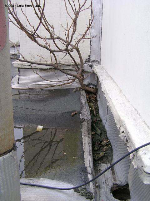 Défaut d'entretien de cunette en toiture-terrasse