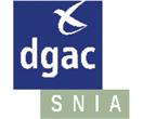 Service national d'ingénierie aéroportuaire