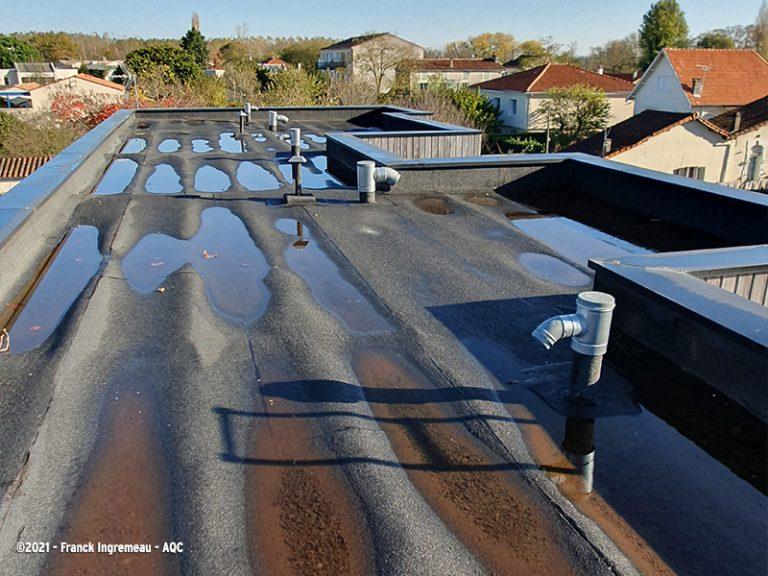 Dégradation des pannes bois en toit-terrasse