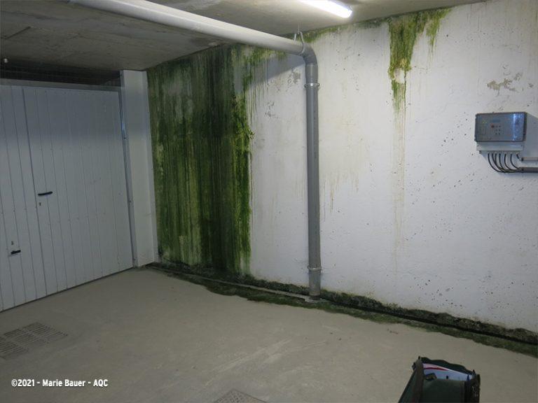 Mauvaise étanchéité d'un mur en sous-sol